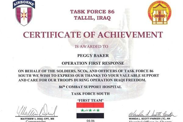 Task_Force_86